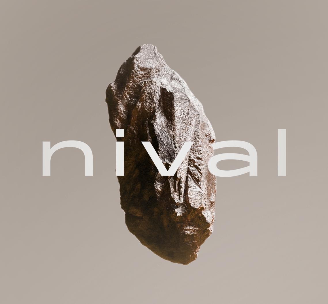 NIVAL_rock_C01